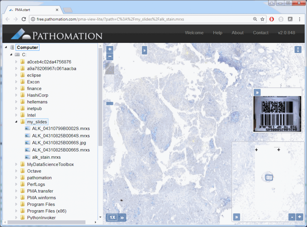 Working with digital microscopy imaging data using our